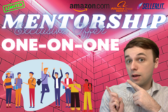 Package: *Sale* 1x1 MENTORSHIP / AMAZON A to Z / 7 SLOTS AVAILABLE