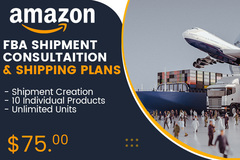 Package: Amazon Shipment Consultation - FBA Shipping Plans