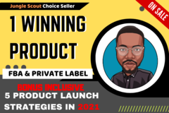 Package: 1 Winning Products: 5,000+/month - CUSTOM CATEGORY