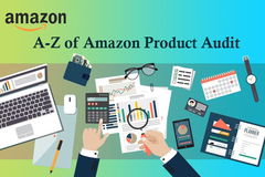Package: A-Z of Amazon Product Audit for 100 Products