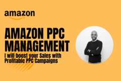 Package: I will audit and optimize your amazon PPC campaigns