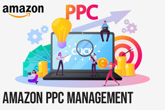Package: Amazon PPC Management-Optimization & Scaling