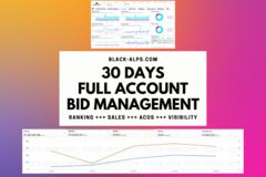Package: 30 days full account Amazon PPC management & custom reports