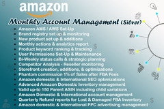 Package: MONTHLY ACCOUNT MANAGEMENT - UNDER PROFESSIONAL TEAM- SILVER