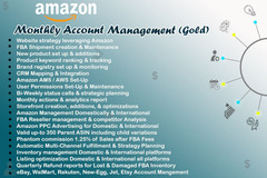 Package: MONTHLY ACCOUNT MANAGEMENT - UNDER PROFESSIONAL TEAM - GOLD