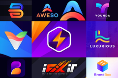 Package: ⭐⭐PREMIUM QUALITY LOGO DESIGN FOR YOUR BUSINESS⭐⭐