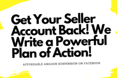 Package: Affordable Amazon Suspension Consulting